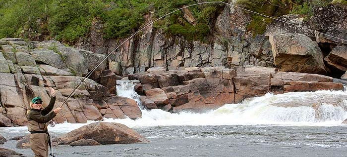 Rynda and Zolotaya Rivers