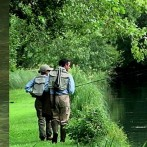 River Test Chalkstream Trout Fishing 2017 – Timsbury
