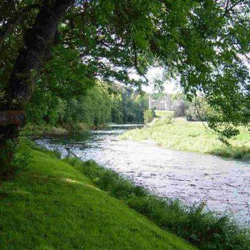 Forglen Estate on the River Deveron