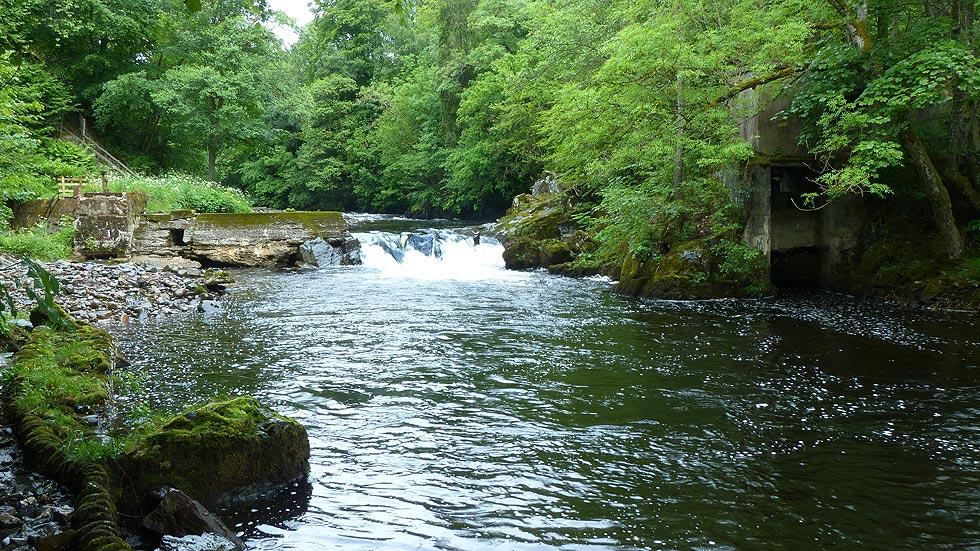River Blackwater Lower Generator Pools