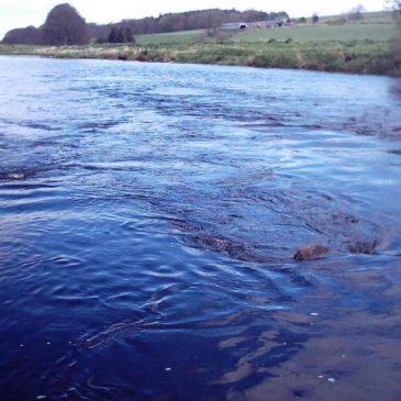 Mountblairy Estate, River Deveron