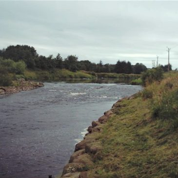 Turriff Angling Association – River Deveron